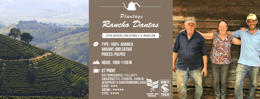 Februar kaffen 2019 fra Rancho Dantas